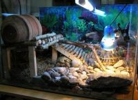 Аквариум для черепах4