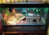 Аквариум для черепах5
