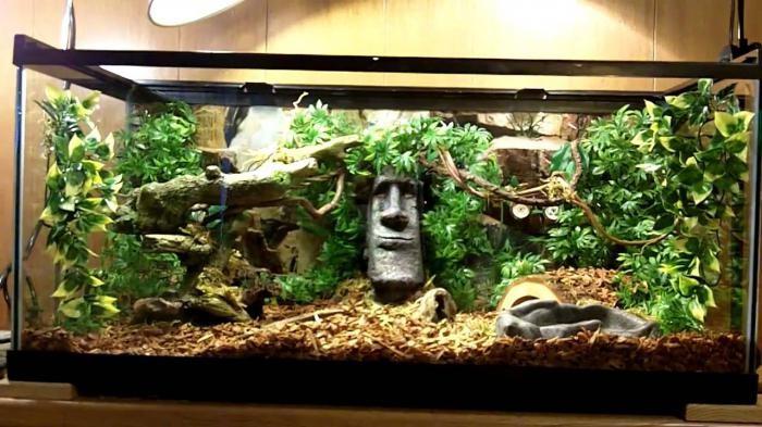 Обустраиваем аквариум для красноухой черепахи своими руками 75