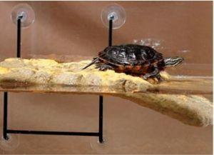 Островок для черепахи своими руками10