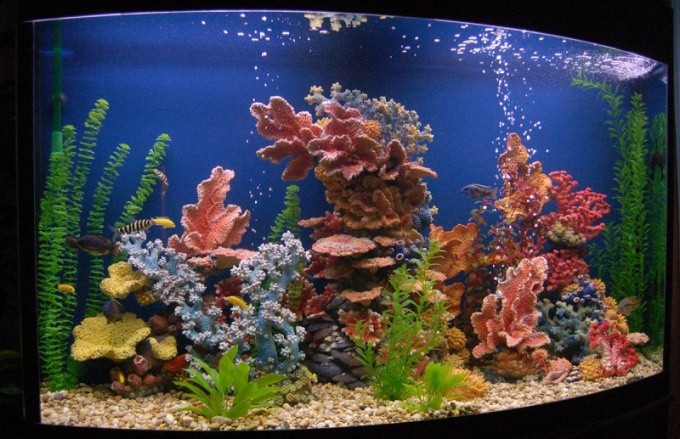 Замок для аквариума своими руками 143