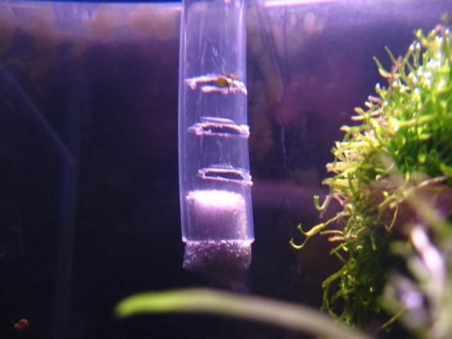 Как из фильтра сделать компрессор для аквариума 22